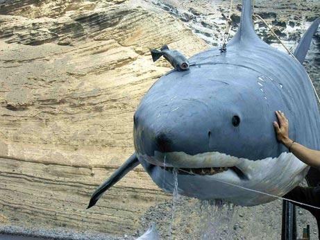 Shark_submarine